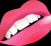 Aparat dentar safir